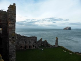 Bass Rock/ Tantallon Castle